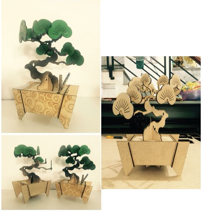 Bonsai DIY Wooden 003