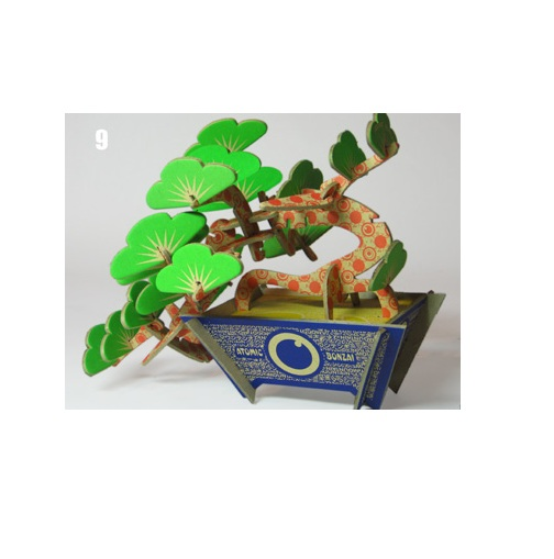 ​Bonsai DIY Wooden 004
