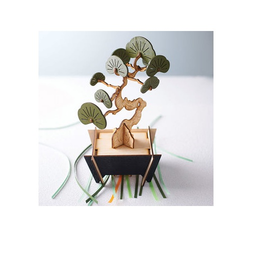 ​​​Bonsai DIY Wooden 009